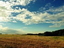 Underbart lantligt landskap Arkivbilder