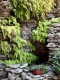 Underbart Manmade stenvattensärdrag med läckra ormbunkar Royaltyfri Fotografi