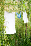 Undergarments drying on clothesline. Undergarments hanging to dry on a summer day Stock Photos