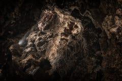 Underground cave texture closeup photo. With limestone Stock Image