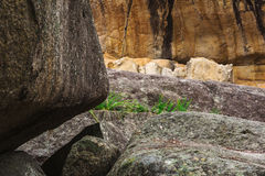 Underground creek in Girraween National Park stock image