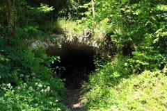 Underground lurking-place in Liptovsky Hradok. Old military underground lurking-place hidden bush of forest in village Liptovsky Hradok Royalty Free Stock Images