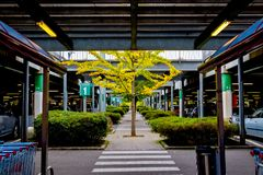 Underground parking is available near the store. Italy Royalty Free Stock Images