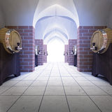 Underground storage with barrels of alcohol drink Stock Photography
