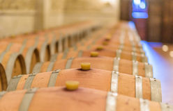 Underground with wooden wine barrels Royalty Free Stock Photos