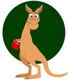underhållande känguru Royaltyfri Fotografi