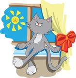Underhållande katt på en fönsterfönsterbräda Royaltyfria Foton