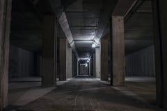 Underjordisk tunnel in i berget Royaltyfria Foton