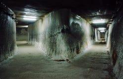 Underjordiskt galleri i en salt min Royaltyfri Fotografi