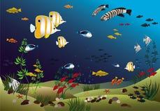 underkanten fiskar det tropiska hav royaltyfri illustrationer