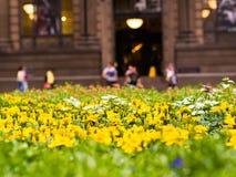 Underlag av Yellow Fotografering för Bildbyråer