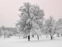 underland för vinter för michigan snowstorm Arkivfoto