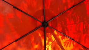 Underneath umbrella with tree shadow. Leaf shadow on outside of orange umbrella cloth. Show structure wires under stock photography