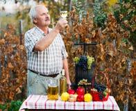 Undersöka av vin av mannen Arkivfoton
