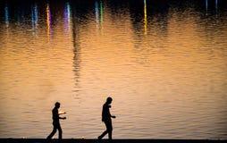 Undersöka belysningceremoni, Pushkar, Rajasthan, Indien Fotografering för Bildbyråer