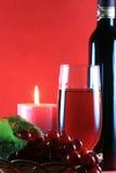 undersöka wine Royaltyfri Fotografi