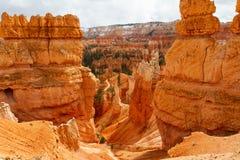 Undersökande Bryce Canyon National Park arkivbild