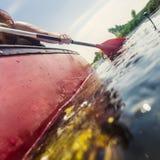 Undersökande natur i en kanot Arkivbild
