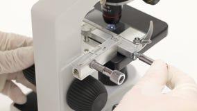 Undersökande prövkopia för forskare under mikroskopet arkivfilmer