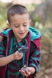 Undersökande sten för pojke, medan fotvandra i skog Arkivbilder