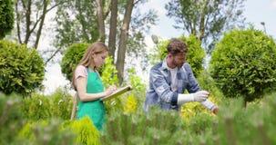 Undersökande växter för kvinna och för man i botanisk trädgård lager videofilmer