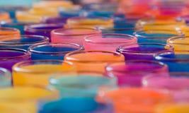 undersöker färgrikt Royaltyfria Foton