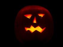 undersöker halloween tänd pumpa Royaltyfri Foto