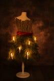 undersöker jul Royaltyfri Bild