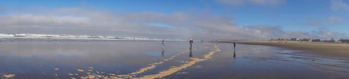 Undersökning av sned bollstränderna fotografering för bildbyråer