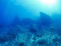 undersea Стоковая Фотография