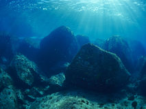 undersea Стоковое Фото