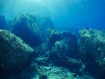 undersea Стоковые Фотографии RF