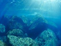 undersea Стоковое фото RF