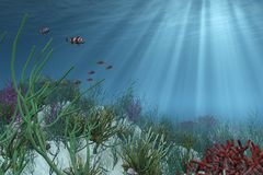 Undersea Background. The right side of this image has been designed to provide space for placement of your text or an object. 3D render Royalty Free Stock Image