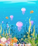 Undersea with fish. Marine Life Landscape - the ocean and the underwater world with different inhabitants. For design websites and Royalty Free Stock Images