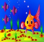 The Undersea life Stock Photo