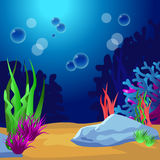 Undersea. Marine Life Landscape - the ocean Royalty Free Stock Image