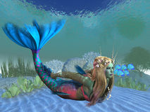 Undersea Mermaid Royalty Free Stock Photo