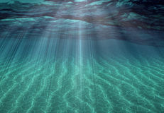Undersea Scene. With rays of light Stock Images