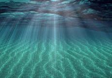 Undersea Scene Stock Images