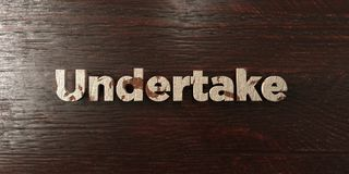 Undertake - grungy wooden headline on Maple  - 3D rendered royalty free stock image Royalty Free Stock Photos