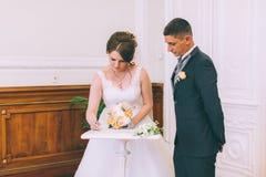 Undertecknande äktenskapslicens för brud och för brudgum Royaltyfri Fotografi