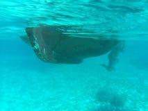 Undervattens- ö Evia ett ställe som där reser Arkivbild