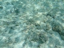 Undervattens- Royaltyfri Fotografi