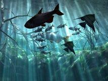 undervattens- Arkivbild
