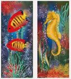 Undervattens- baner med seahorsen och den röda tropiska fisken Arkivfoto