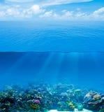 Undervattens- djupt med vattenyttersida royaltyfria foton