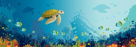 Undervattens- djurliv - sköldpadda, korallrev, fisk, sjunket skepp, hav royaltyfri illustrationer