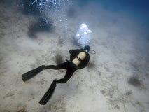 Undervattens- dykare i undervattens- värld Royaltyfri Bild