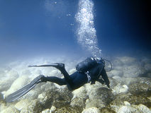 Undervattens- dykare i undervattens- värld Arkivbilder